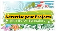 Electronic City Real Estate